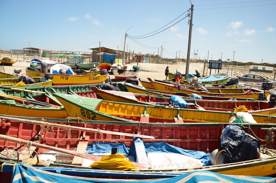 Boats in Punta de Choros