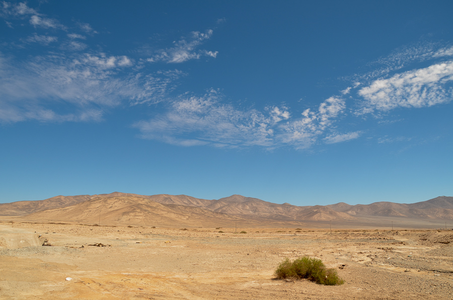 Desert landscape of Chile