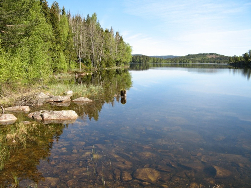 Crossing Norwegian forests and lakes