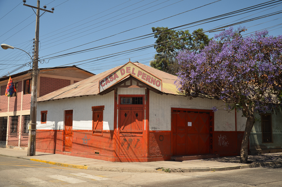 Red house with flowers in Vallenar