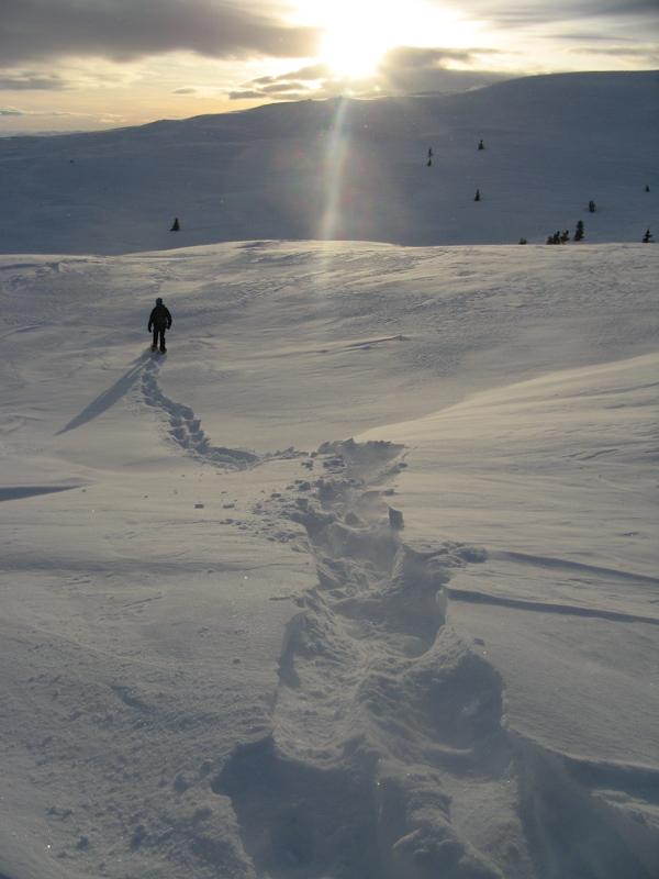 Przetrwać norweską zimę