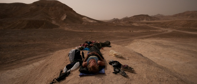 Oasis 101 on Israeli desert