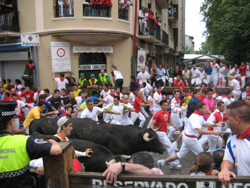 Festiwal San Fermin  w Pampelunie