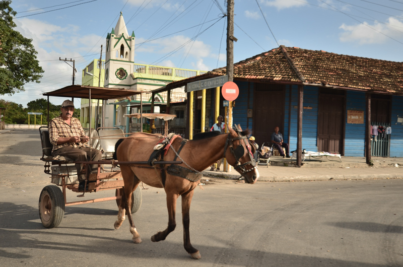 Horse pulling a carriage, Cuban countryside