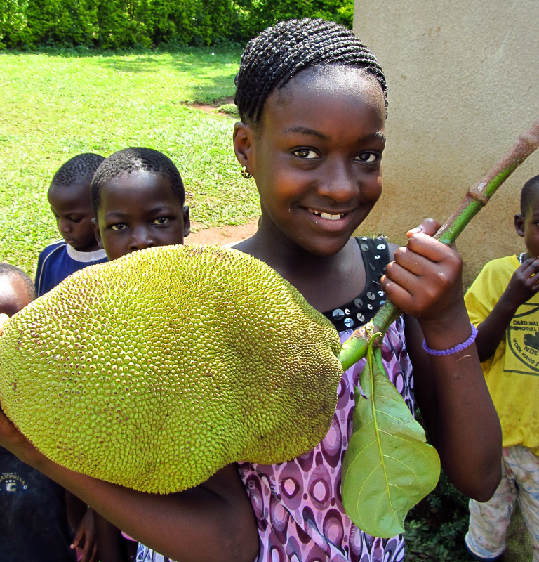 Kids are inviting us to try jackfruit